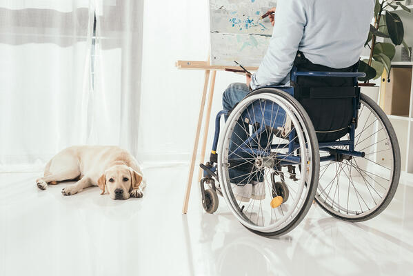 A man in a wheelchair paints while a dog lays on the floor in front of him Property Management